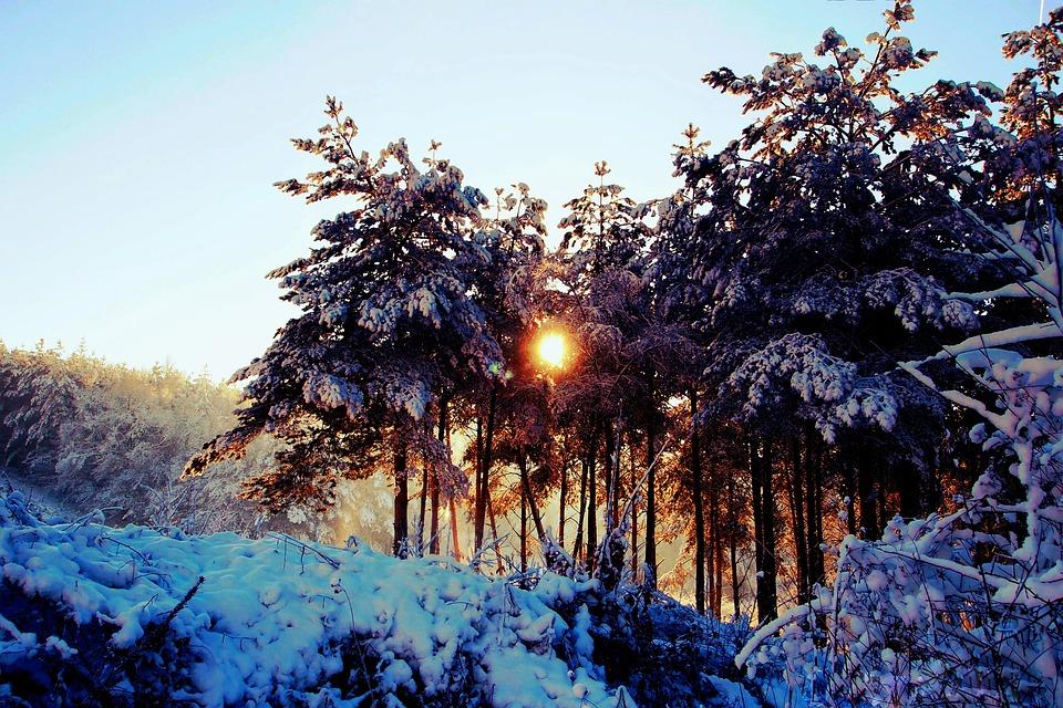 El triste invierno.